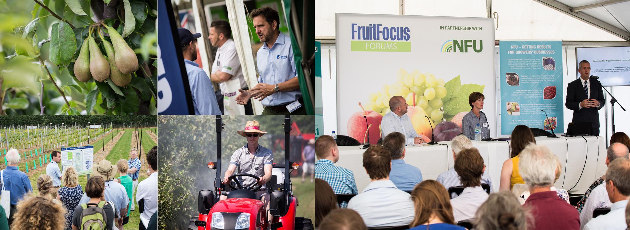 EndoSan exhibits at Fruit Focus 2017